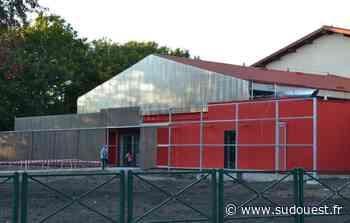 Martignas-sur-Jalle : des soirées exceptionnelles de qi-gong, en juin - Sud Ouest