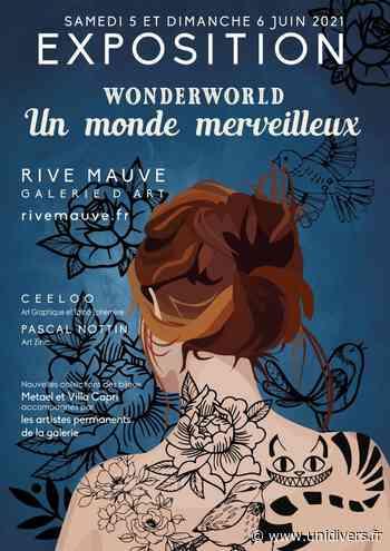 Exposition « Wonderworld – Un monde merveilleux » Galerie Rive Mauve - Unidivers