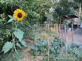 Venez découvrir notre petit coin de verdure sur le plateau de Bagnolet Jardin partagé du plateau samedi 3 juillet 2021 - Unidivers
