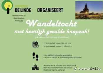 3 biggetjes wandeling in De Linde (Borgloon) - Het Belang van Limburg Mobile - Het Belang van Limburg