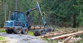 Waldwirtschaft : Forstamt Gerolstein im Wettlauf gegen die Zeit - Trierischer Volksfreund