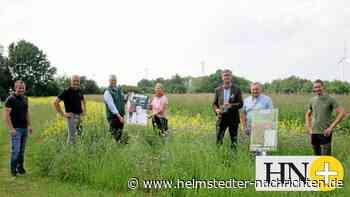 Bauern und Jäger im Kreis Helmstedt nehmen Rücksicht - Helmstedter Nachrichten