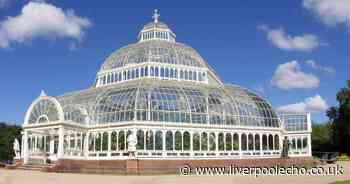 Sefton Park Palm House celebrating 125 year anniversary with free family fun day - Liverpool Echo