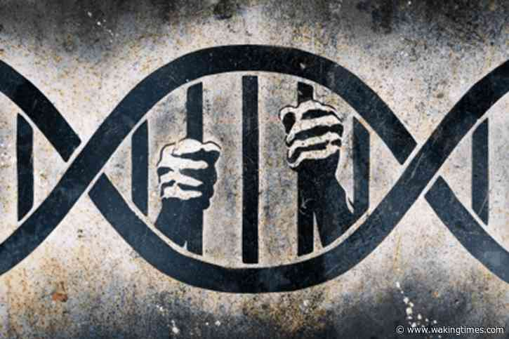 The War Over Genetic Privacy Is Just Beginning