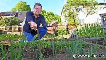 Pflanzen wachsen langsam - An der Oberfläche ist es zu trocken - Nordbayerischer Kurier