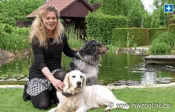 Ernährungsberatung für Hunde in Varel: So bleiben Hunde ein Leben lang fit - Nordwest-Zeitung