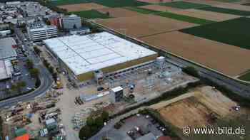 Globus in Eschborn: Hier wächst ein 60-Mio.-Supermarkt   Regional - BILD