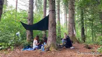 Aktivisten bauen Baumhäuser in Forst Kasten – Polizei vor Ort - BR24