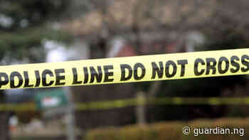 Auto crash claims 18 in Jigawa – Police   The Guardian Nigeria News - Nigeria and World News — Nigeria — The Guardian Nigeria News – Nigeria and World News - Guardian