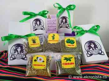 Campesinas de Anzoátegui crearon emprendimiento con hierbas medicinales - El Cronista