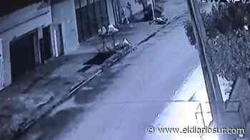 Lanús: Mataron a golpes a su hermano, quedó filmado y ahora ofrece recompensa por encontrar al asesino - El Diario Sur