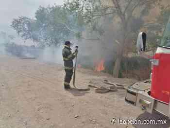 Prenden reseca vegetación en el san pedro y bomberos evita propagación - La Opcion