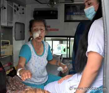 Un perro le mordió la cara a una mujer en Salamina - La Patria.com