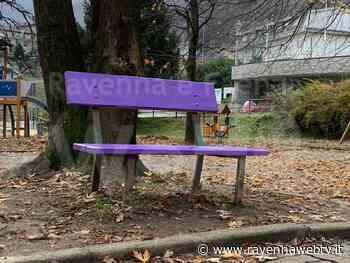 A Castel Bolognese il Comune inaugura la panchina viola della gentilezza - Ravennawebtv.it