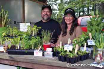 Powassan farmstand tour sees enormous growth in single year