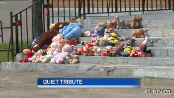 Teddy bears left at Grand Falls-Windsor church in memory of Residential School victims - ntv.ca - NTV News