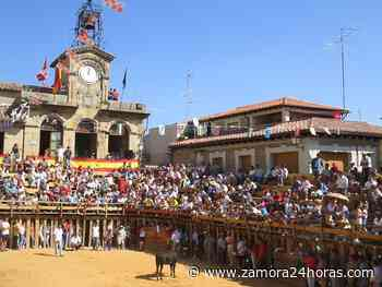 Fermoselle sí celebrará las fiestas de San Agustín 2021 recuperando eventos taurinos - Zamora 24 Horas