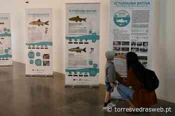 Torres Vedras dedicou o Dia Internacional da Biodiversidade aos peixes nativos - TORRES VEDRAS WEB
