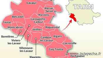 Élections départementales / Canton de Lavaur : Qui pour succéder à Jo Dalla Riva ? - ladepeche.fr
