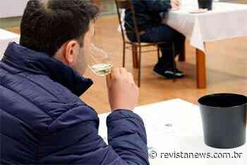 Aviga abre inscrições para a 19ª Seleção dos Melhores Vinhos de Garibaldi - Revista News