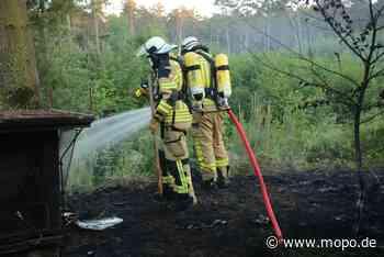 Bei Hamburg: Feuerwehr verhindert Waldbrand - Hamburger Morgenpost