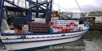 PM apreende quase 2,8 toneladas de camarão pescados irregularmente em Bertioga - O Diário