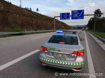 Aveiro / GNR: Balanço do comando distrital com 63 detidos e um morto em acidente rodoviário - Notícias de Aveiro