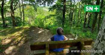 Wanderwege in Rinteln: Touristen kritisieren zugewachsene Pfade und fehlende Schilder - Konzept kommt - Schaumburger Nachrichten