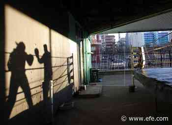 Boxeador venezolano refugiado en Trinidad y Tobago acudirá a las Olimpiadas - EFE - Noticias