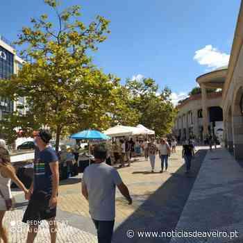 Aveiro: 'Artes no Canal | Mercado de Fusão' volta a 12 de junho - Notícias de Aveiro