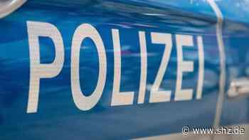 Halter griff nicht ein : Kind in Ratzeburg von freilaufendem Hund attackiert   shz.de - shz.de