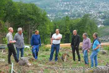 Ohne Wald kein Wasser: Schulterschluss im Brachbacher Wald - Siegener Zeitung