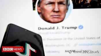 Donald Trump-era ban on TikTok dropped by Joe Biden