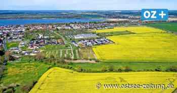 Ribnitz-Damgarten: Bessere Pachtverträge für Landwirte ohne Pestizide - Ostsee Zeitung