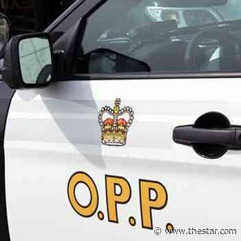 2 Markham residents arrested as Almaguin OPP break up $5-million pot grow-op - Toronto Star