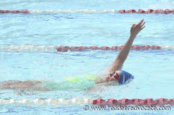 Red Deer Catalina back in the pool and eager to compete – Red Deer Advocate - Red Deer Advocate