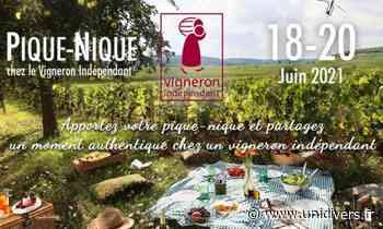Pique-nique chez le Vigneron Indépendant Chateau Gaudrelle dimanche 20 juin 2021 - Unidivers