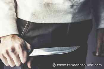 Une femme tuée de plusieurs coups de couteau par son compagnon - Tendance Ouest