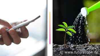 Pflanzenbewässerung: Wenn du im Urlaub bist, übernehmen es diese Gadgets - futurezone.de