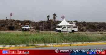 """Recogen ramas de """"Gigante"""" en Nuevo Laredo - Hoy Tamaulipas"""