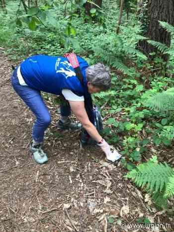 Opération nature propre ce samedi dans le secteur d'Epernay - L'Union