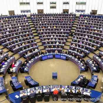 Europaparlament will Untätigkeitsverfahren gegen Kommission - radioleverkusen.de