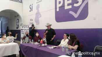 Al igual que La Tuta y El Chayo, los candidatos me ofrecieron dinero para declinar: Hipólito - Meta Política