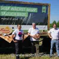 Bäckerei setzt auf regionales Getreide - WochenKurier