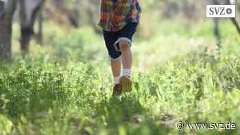 Kind aus Kita verschwunden : Vierjähriger wandert alleine kilometerweit durch Wittenberge   svz.de - svz – Schweriner Volkszeitung