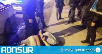 Puerto Madryn: detuvieron a dos hombres que talaban árboles en una reserva y uno atacó a la policía con un cuchillo - ADN Sur