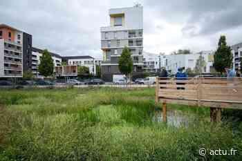 Gennevilliers. Après des déboires, un parc tout neuf ouvre enfin entièrement - actu.fr