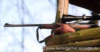 Bei einem Einbruch in Lauterbach erbeuteten die bisher unbekannten Täter mehrere Jagdwaffen, Munition und Armbanduhren. - Lauterbacher Anzeiger
