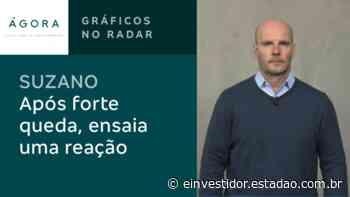 Gráficos no radar: Suzano ensaia reação após forte queda – Gráficos no Radar – E-Investidor - E-Investidor