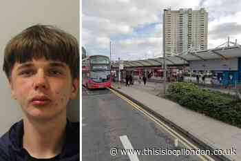 Enfield teen who robbed police officer in Edmonton jailed